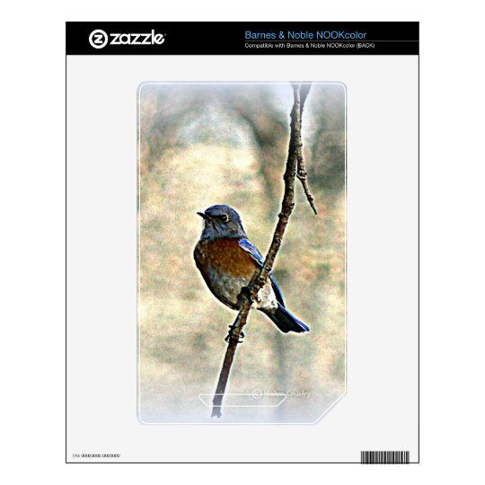 Bluebird of Happiness Decals For NOOK Color