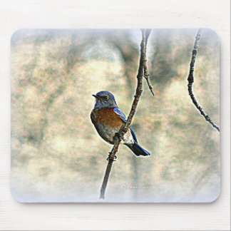 Bluebird of Happiness Mouse Pad
