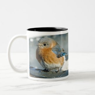 Bluebird on birdbath Two-Tone coffee mug