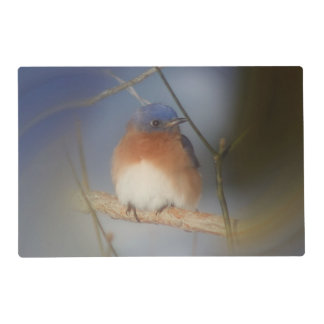 Bluebird On Branch Animal Placemat