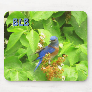 Bluebird on Lilac Hedge your Initials Mouse Pad