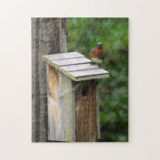 Bluebird on the New River Jigsaw Puzzle