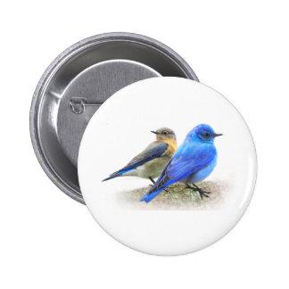 bluebird pair, male and female mountain bluebirds 2 inch round button