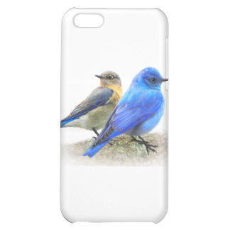 bluebird pair, male and female mountain bluebirds iPhone 5C cover