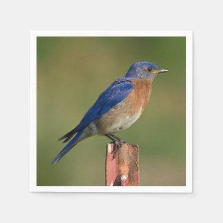 Bluebird Paper Napkin