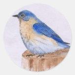 Bluebird Pegatinas