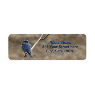 Bluebird Photo Return Address labels