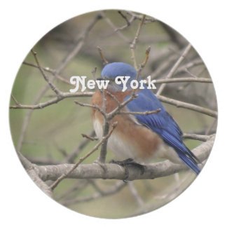 Bluebird Party Plate