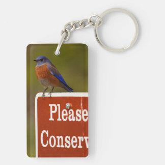 Bluebird, Please Conserve Double-Sided Rectangular Acrylic Keychain