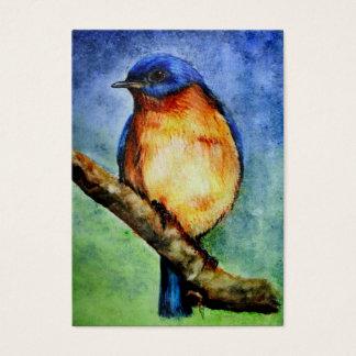 Bluebird Portrait ACEO Art Trading Cards