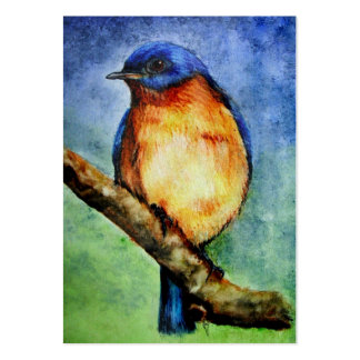 Bluebird Portrait ACEO Art Trading Cards Large Business Card