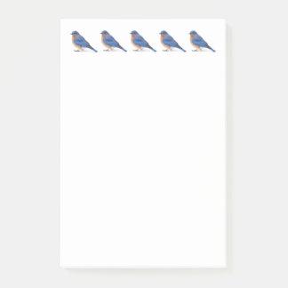 Bluebird Post-it Notes