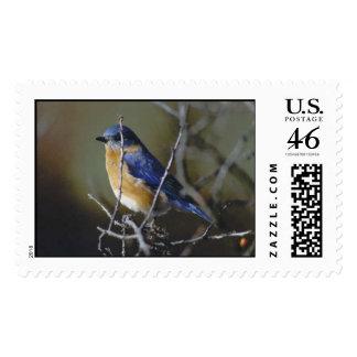 bluebird postage stamp