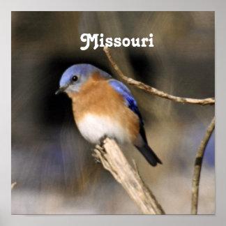 Bluebird Poster