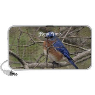 Bluebird Speaker System