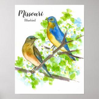 Bluebird State Bird of Missouri Poster