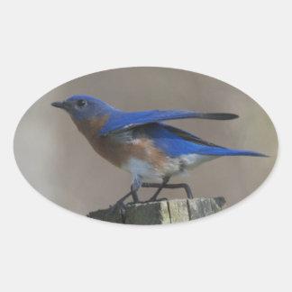 Bluebird Taking Off Sticker