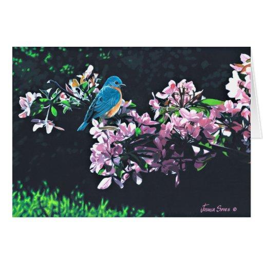 Bluebird Tarjeton