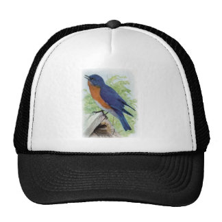 Bluebird Trucker Hat
