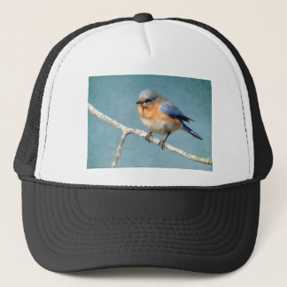 Bluebird truckers hat