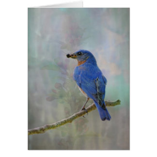 Bluebird Watercolor Card