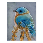 Bluebird Watercolor Post Card