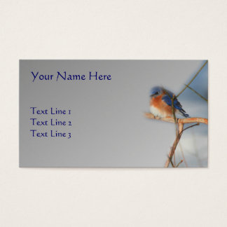 Bluebird Wildlife Nature Business Card