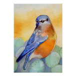 Bluebird with Eggs Watercolor Poster