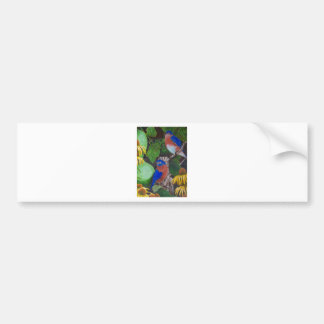 Bluebirds Bumper Sticker