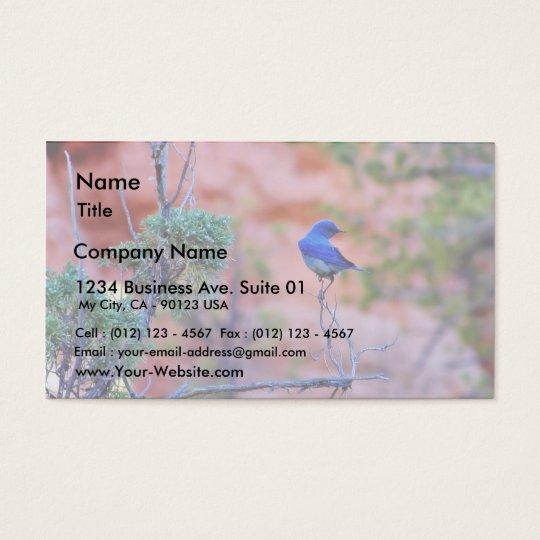 Bluebirds Business Card