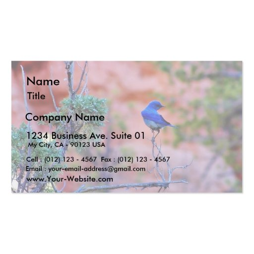 Bluebirds Business Card Template