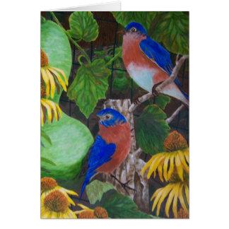 Bluebirds Cards