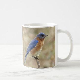 Bluebirds Coffee Mug