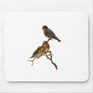 Bluebirds Family Mouse Pad