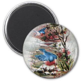 Bluebirds in Winter Vintage Christmas Magnet