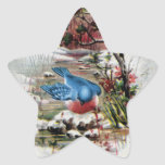 Bluebirds in Winter Vintage Christmas Star Sticker