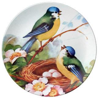 Bluebirds lindos de la primavera en la jerarquía platos de cerámica