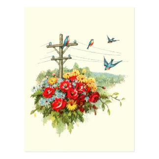 Bluebirds on Power Line Post Card