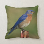 Bluebirds - See Both Sides Pillows
