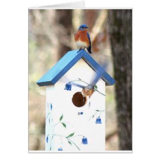 Bluebirds Tarjeta De Felicitación