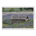 Bluebonnet Barn Greeting Card