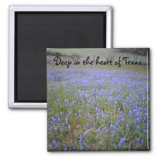 Bluebonnet Field phrase magnet