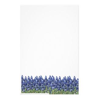 Bluebonnet Field Stationery