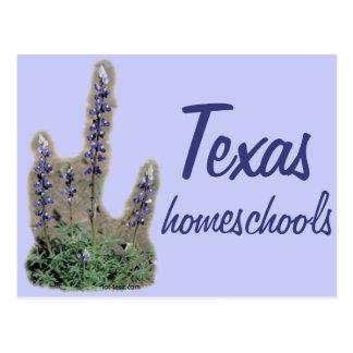 Bluebonnet Homeschool Postcard
