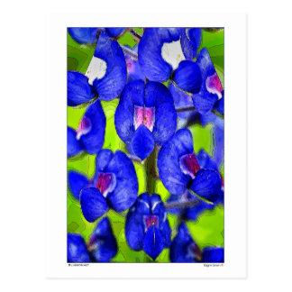 Bluebonnet - pétalos - detalles postal