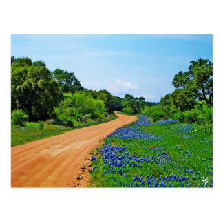 Bluebonnet Road Postcard