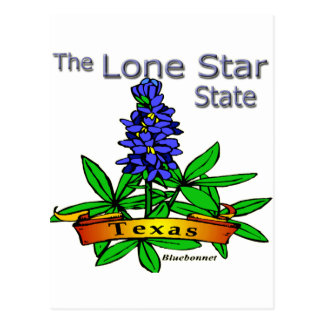 Bluebonnet solitario del estado de la estrella de  tarjeta postal