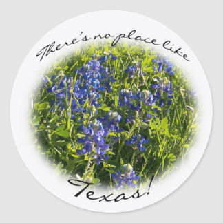 """Bluebonnet """"There's no place like Texas"""" Sticker"""