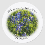 """Bluebonnet """"There's no Place Like Texas."""" Sticker"""