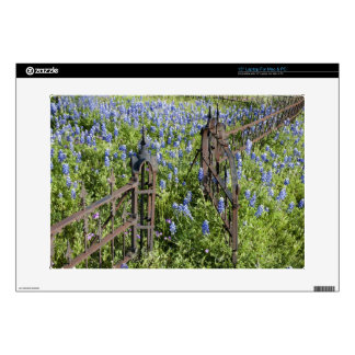 Bluebonnets and phlox surrounding cemetery gate laptop decal